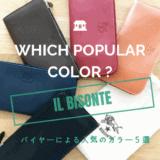 イルビゾンテの人気カラーのブログ記事